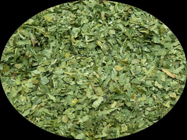 Bärlauch Pesto (gewuerze)