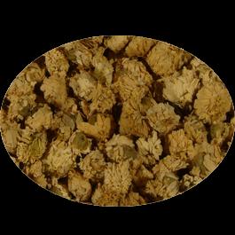 Römische Kamille