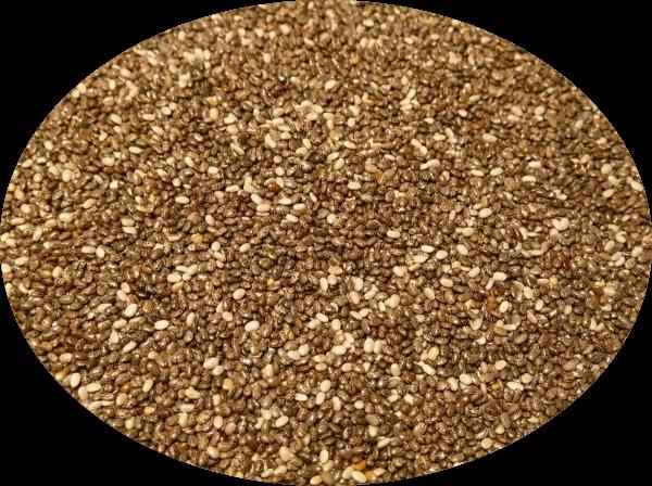 Chia-Samen schwarz-weiß (kraeuter)