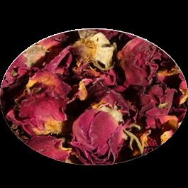 Rosenblütenknospen rot